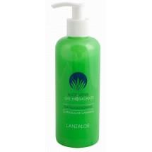 Lanzaloe | Gel Hidratante Aloe Vera After Sun Ecologico Bio Flüssigkeitsgel 250ml Pumpflasche (Lanzarote)