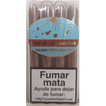 Flor de Canarias | Puros Tubular Calidad Extra Quality 4 Zigarren einzeln in Röhrchen verpackt (Teneriffa)