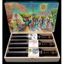 Tajinaste | LightfulCanarias CAN Paisajes de las Islas Edicion Especial Jardin de Las Hesperides Vino Tinto Rotwein 3x 500ml (Teneriffa)