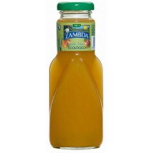 Lambda | Ecologico Melocoton y Manzana Pfirsich-Apfel Bio Saft Glasflasche 250ml (Gran Canaria)